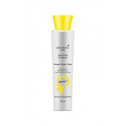 Шампунь «Перевоплощение волос. Сила, сияние и гладкость» - Makeover Shampoo. Normal & Damaged Hair