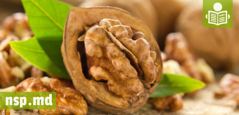 Грецкий орех против ракаы