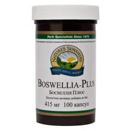 АКЦИЯ! Босвеллия Плюс - Boswellia