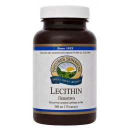 Лецитин - Lecithin