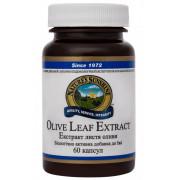 Листья Оливы - Olive Leaf Extract