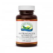Астрагал - Astragalus