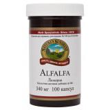 Люцерна - Alfalfa - Альфа