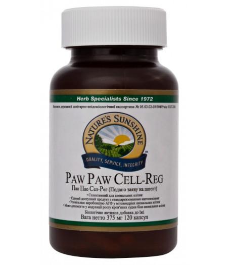 Пау Пау - Paw Paw Cell