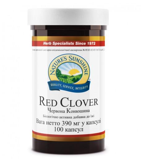 Красный Клевер - Red Clover