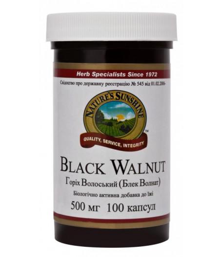 Грецкий (Черный) Орех - Black Walnut