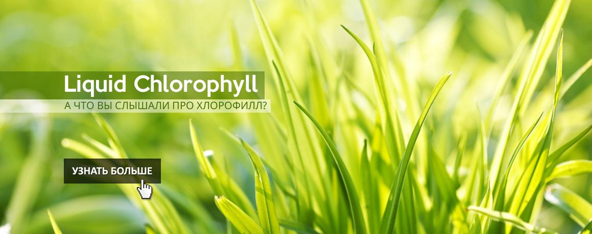 А что вы знаете про хлорофилл?