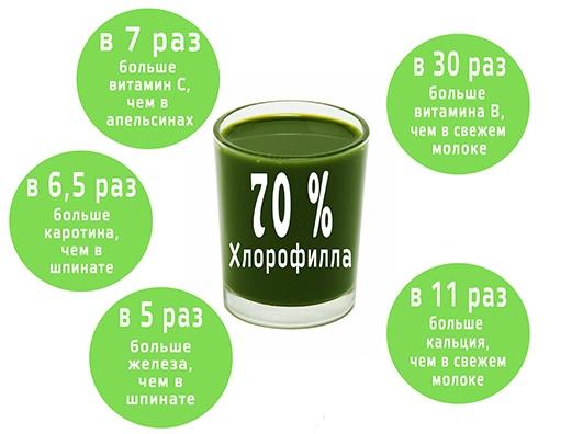 Преимущества Хлорофилла