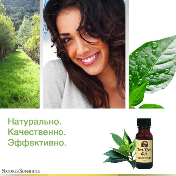 Масло чайного дерева в Молдове купить