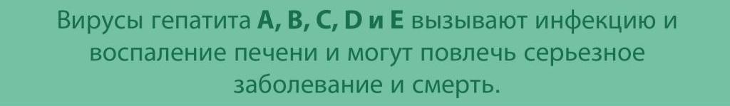Вирус Гепатит