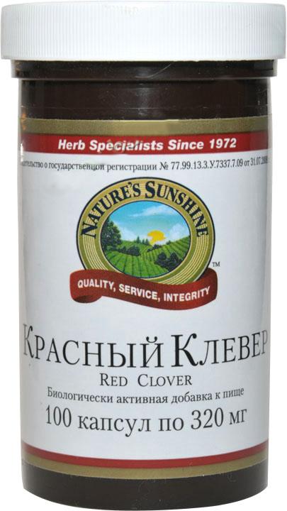 Красный Клевер широко распространенное цветковое растение