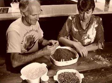 История использования перца в NSP