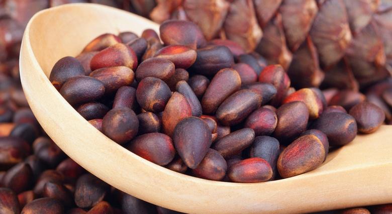 Кедровые орешки снижают аппетит