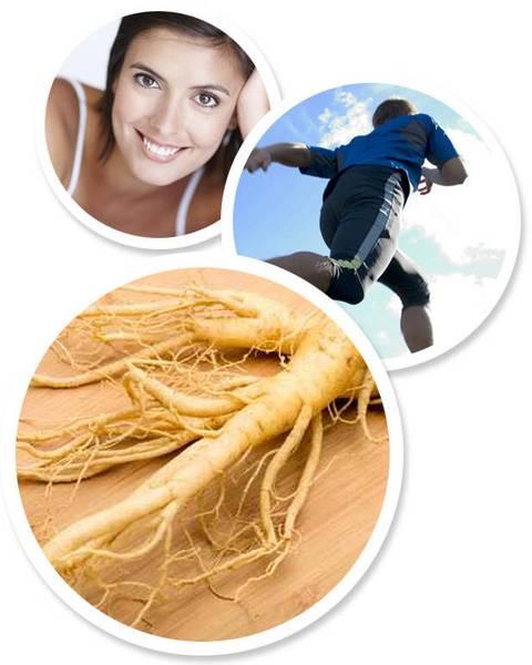 Лечебные травы, минералы, витамины